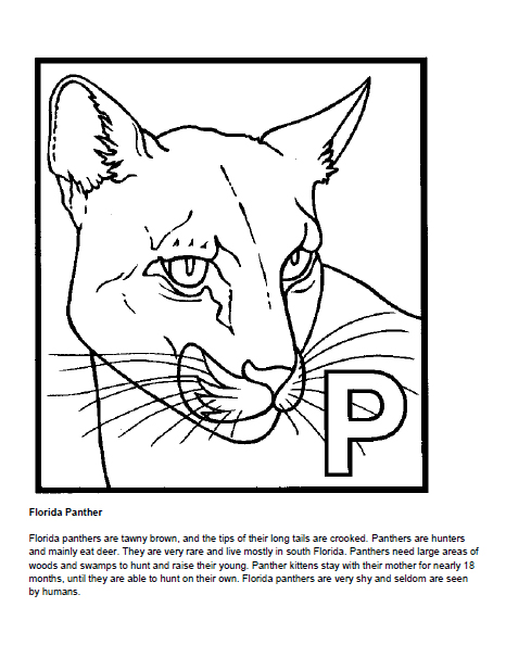 flanimal coloring pages - photo#8