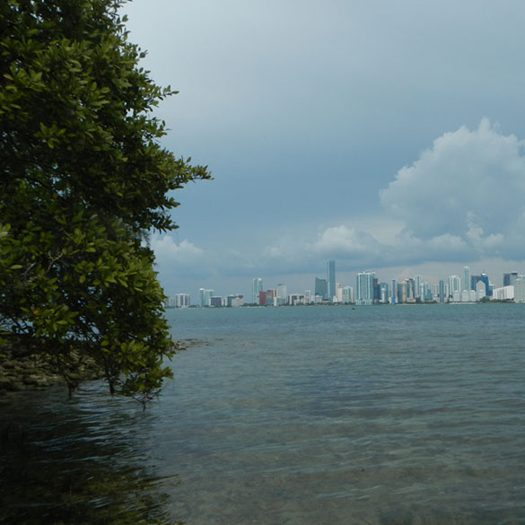 Biscayne Bay Aquatic Preserves